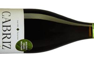 Cabriz - Nytt Ekologiskt Vin Från Portugal