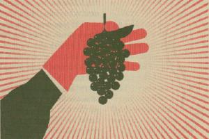 Vår, vinnare och vin på burk - det här händer i dryckesvärlden