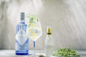 Lilla ginskolan - allt du behöver veta om gin